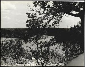 Cookson Hills 1938 (2).jpg